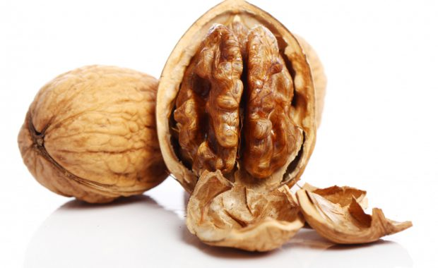 fresh-walnut